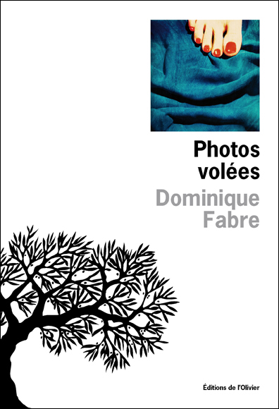 Photos volées - Dominique Fabre